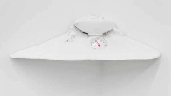 Christoph Rutimann - 2 Kilogramm 250 Gramm in Gips, 2005