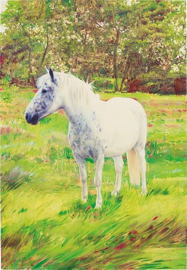 Christoph Schmidberger-Horse-2004