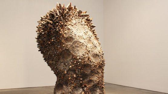 Chun Kwang Young - Aggregation 12-AU042, detail