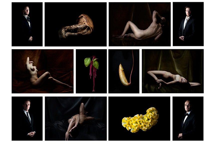 Claudia Rogge exhibition Galerie Voss