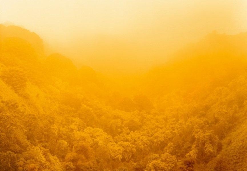 Climate Vortex Sutra
