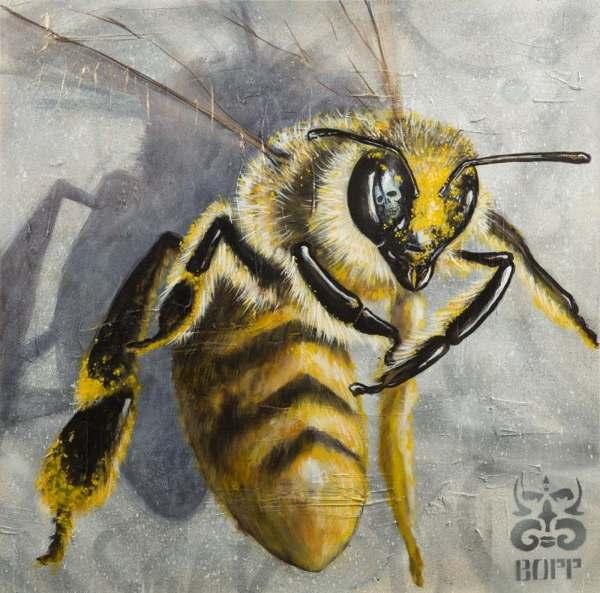 Clinton Bopp-Bee #5-2015
