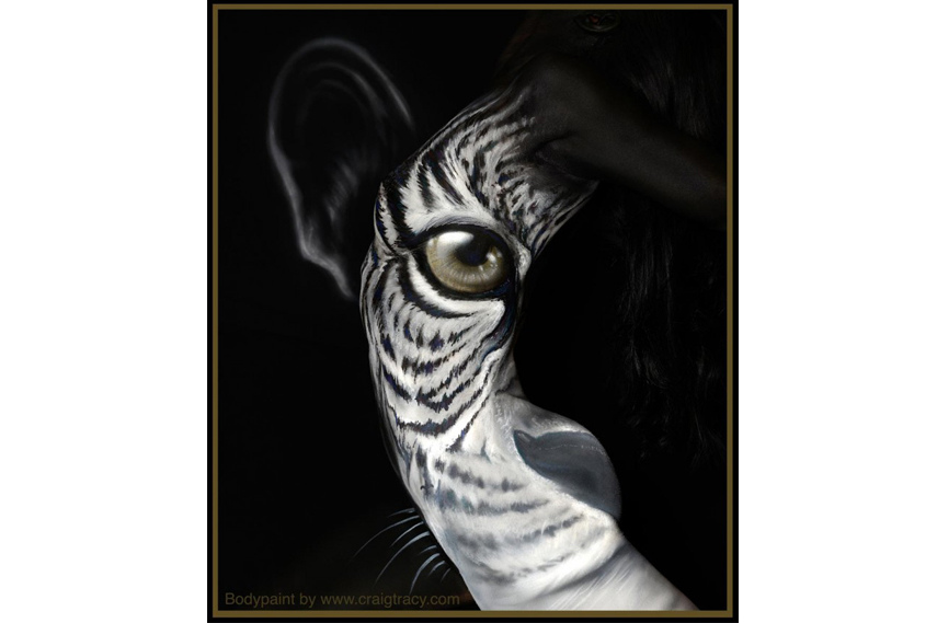 Craig Tracy - Prowl - Image via Craigtracy com