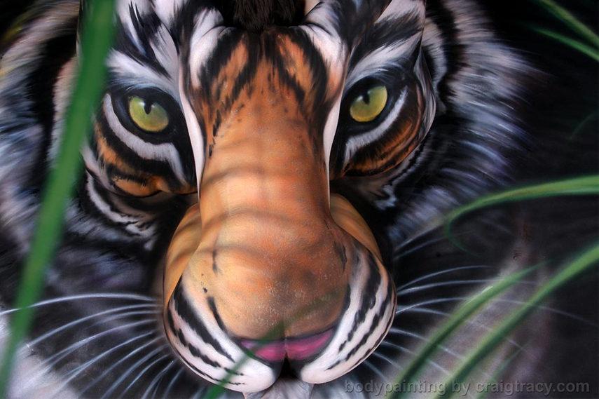 Craig Tracy - Salvation South China Tiger - Image via Craitracy com