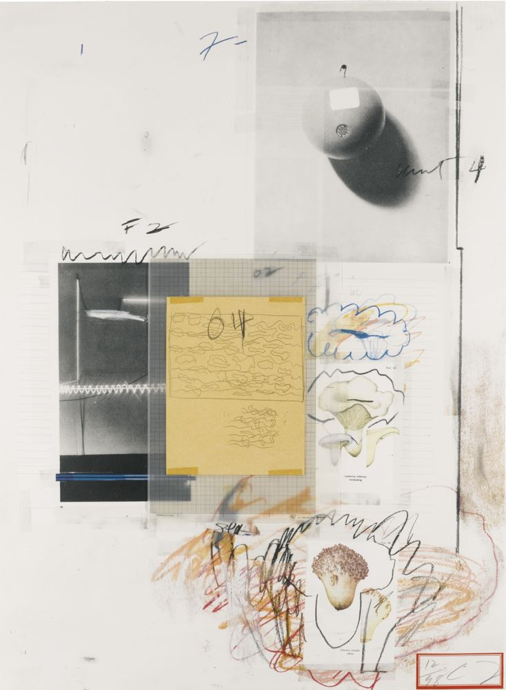 Cy Twombly-Natural History, Part I (Mushrooms): No. VIII-1974