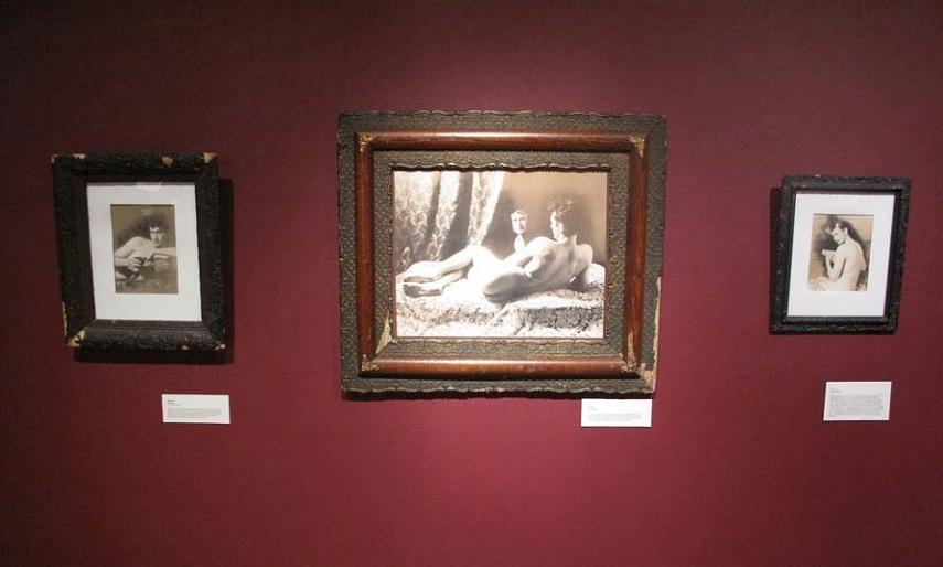 Cynthia Greig - The Museum (instalation view), 2011, copyrights Cynthia Greig