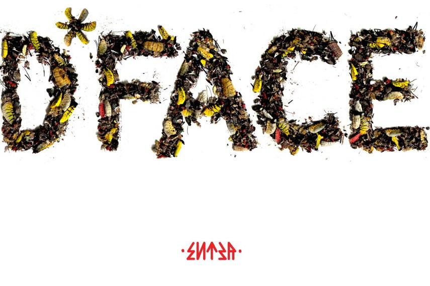 D*Face website screenshot