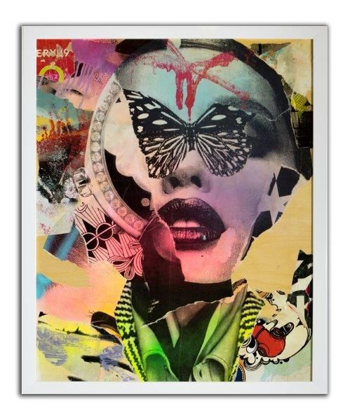 Dain-Mind Over Fly-2013