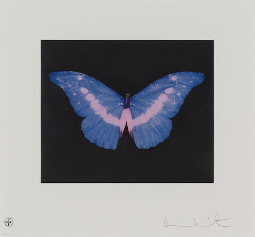 Damien Hirst-Blue Pink Butterfly-2008