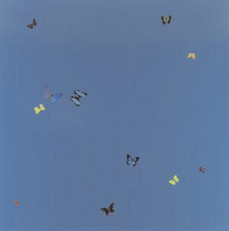 Damien Hirst-Blue Skies-2005
