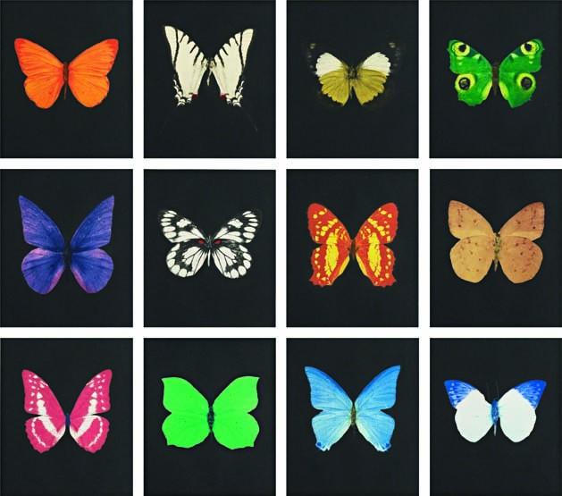 Damien Hirst-Butterfly Etching Portfolio-