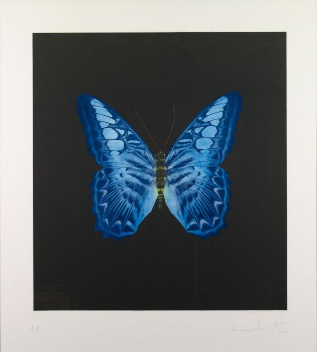 Damien Hirst-Butterfly Blue-2008