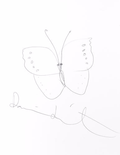 Damien Hirst-Butterfly Drawing-
