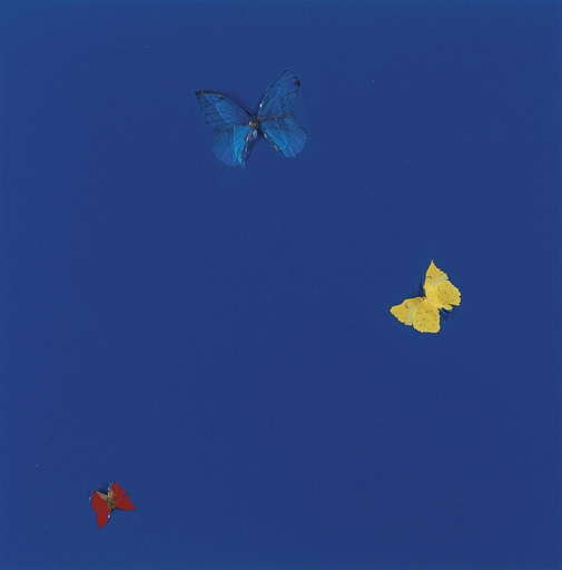 Damien Hirst-Clean Life-2000
