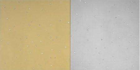 Damien Hirst-Gold and Silver with Diamonds-2008