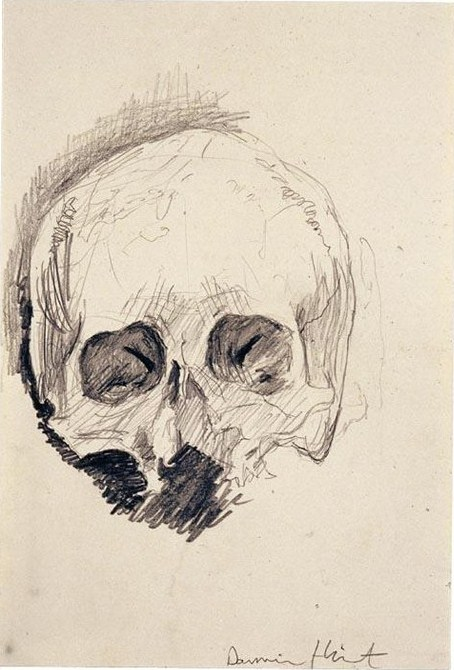 Damien Hirst-Half Skull-1998