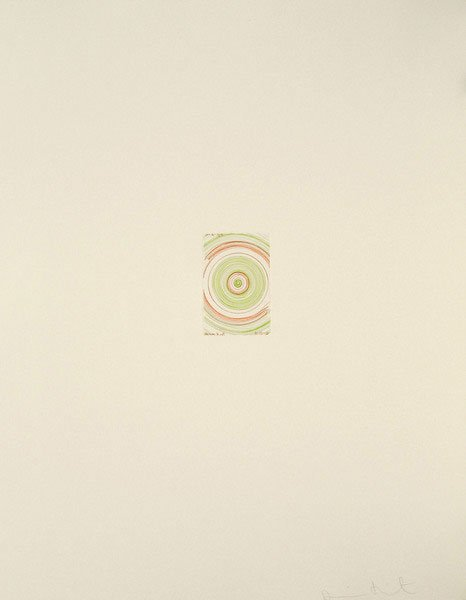 Damien Hirst-In a Spin (from In a Spin, The Action of the World on Things, Volume I)-2002