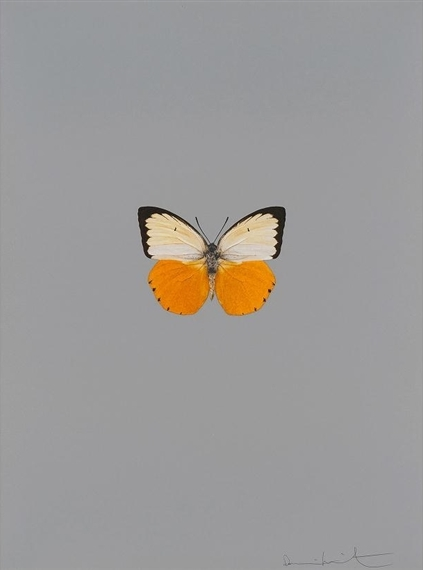 Damien Hirst-It's a Beautiful Day-2013