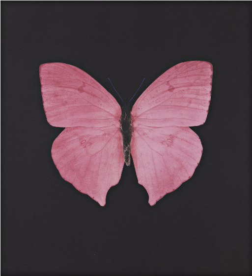 Damien Hirst-Mauve Butterfly-2008