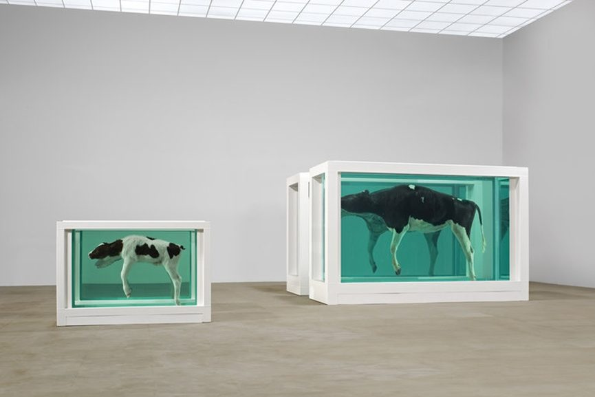 Damien Hirst - Mother and Child (Divided),1993