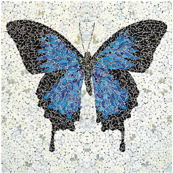 Damien Hirst-Papilio Ulysses-2008