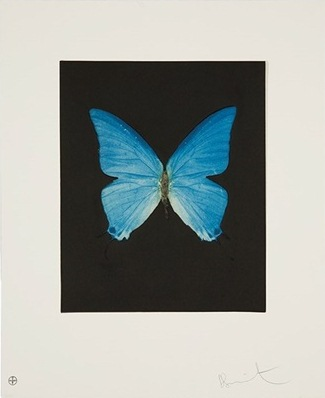 Damien Hirst-Providence, from the Butterfly portfolio-2009