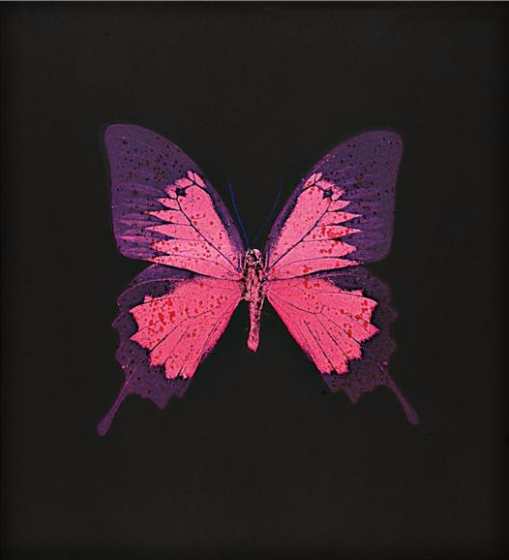 Damien Hirst-Purple Butterfly-2008