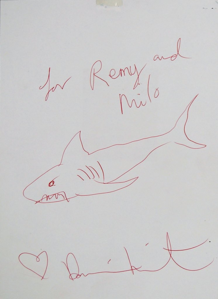Damien Hirst-Shark, Red Pen-
