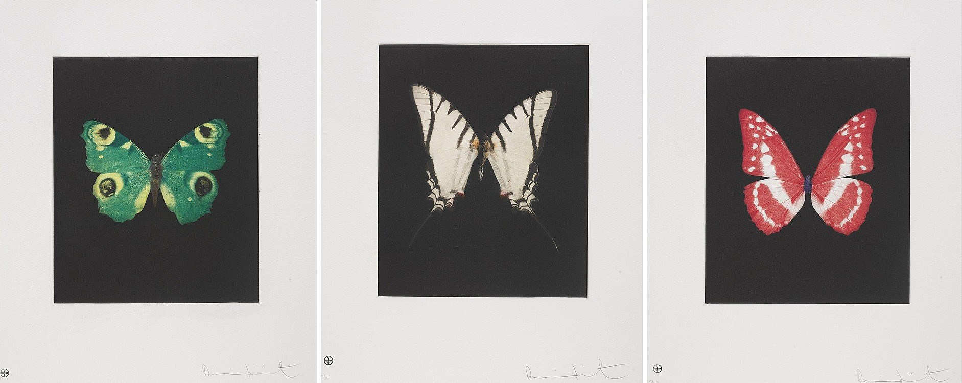 Damien Hirst-Spirit, Fate and Eternal Rest-2009