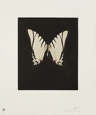 Damien Hirst-Spirit from Butterfly Etchings-2009
