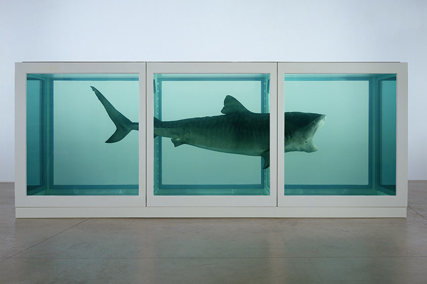 Damien Hirst - The Physical Impossibility of Death in the Mind of Someone Living, 1991
