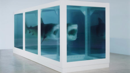 Damien Hirst-The Physical Impossibility of Death in the Mind of Someone Living-2013