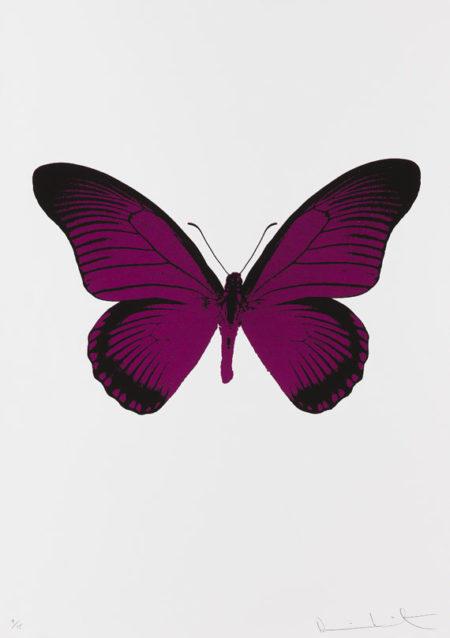 Damien Hirst-The Souls IV: Fuchsia Pink, Raven Black-2010