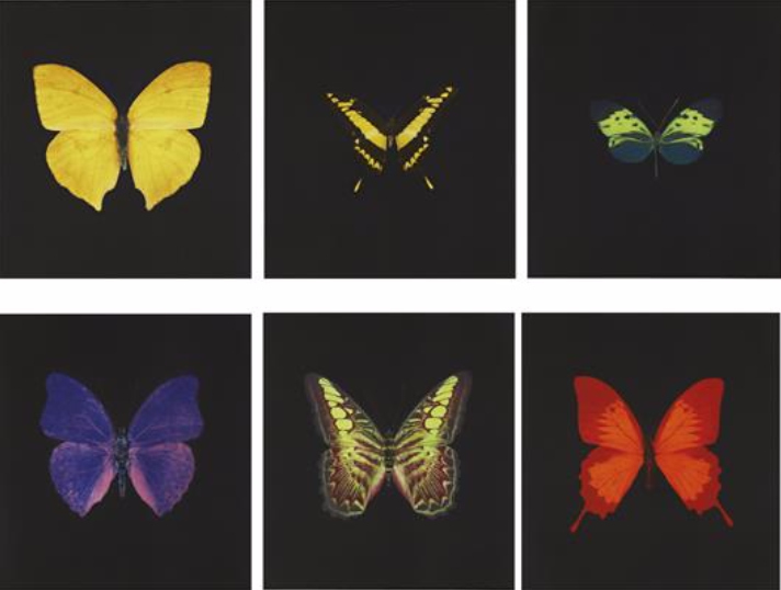 Damien Hirst-The Souls on Jacob's Ladder Take Their Flight-2007