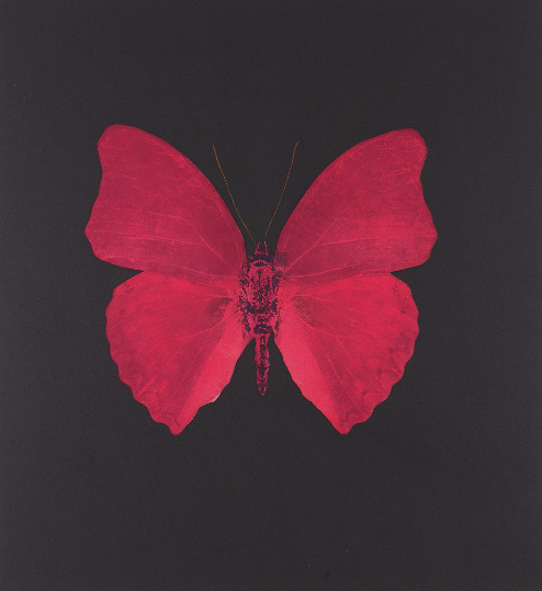 Damien Hirst-Unique Red Butterfly-2008
