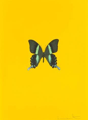 Damien Hirst-Untitled 03 (New Beginnings)-2011