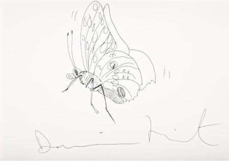 Damien Hirst-Untitled (Butterfly Drawing)-2004