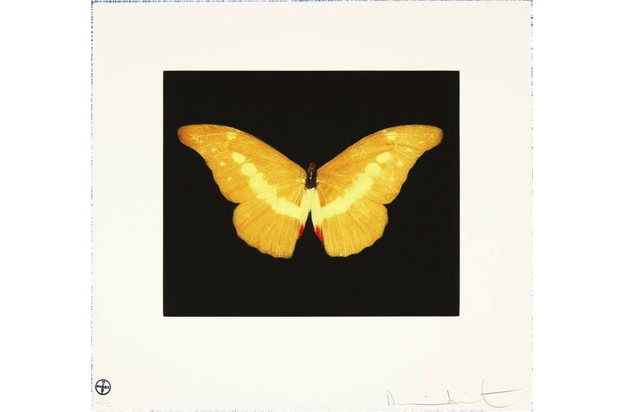 Yellow Butterfly, 2007