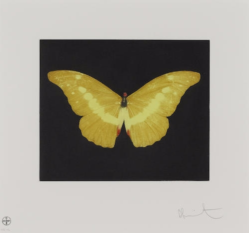 Damien Hirst-To Lure (Yellow Butterfly)-2008