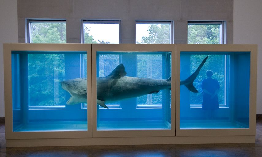 Damien Hirst's The Physical Impossibility of Death in the Mind of Someone Living
