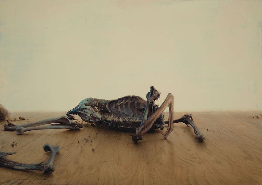 Daniel Sprick - Remains, 2011