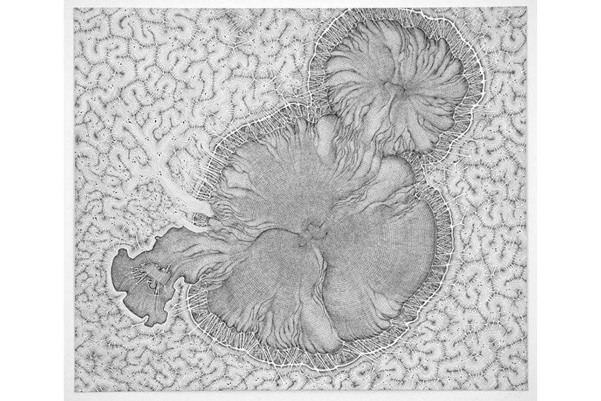 Daniel Zeller - Noncompliance, 2015. Ink on paper, 14 x 16.5 in