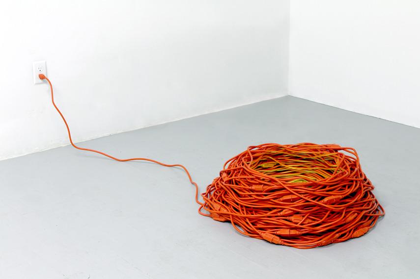 Dave Rittinger - Nest