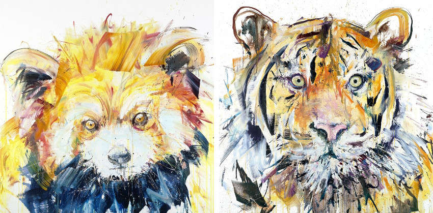 Dave White - Red Panda, 2015 - Tiger III, 2015, dave white has finished the latest edition, dave white latest work