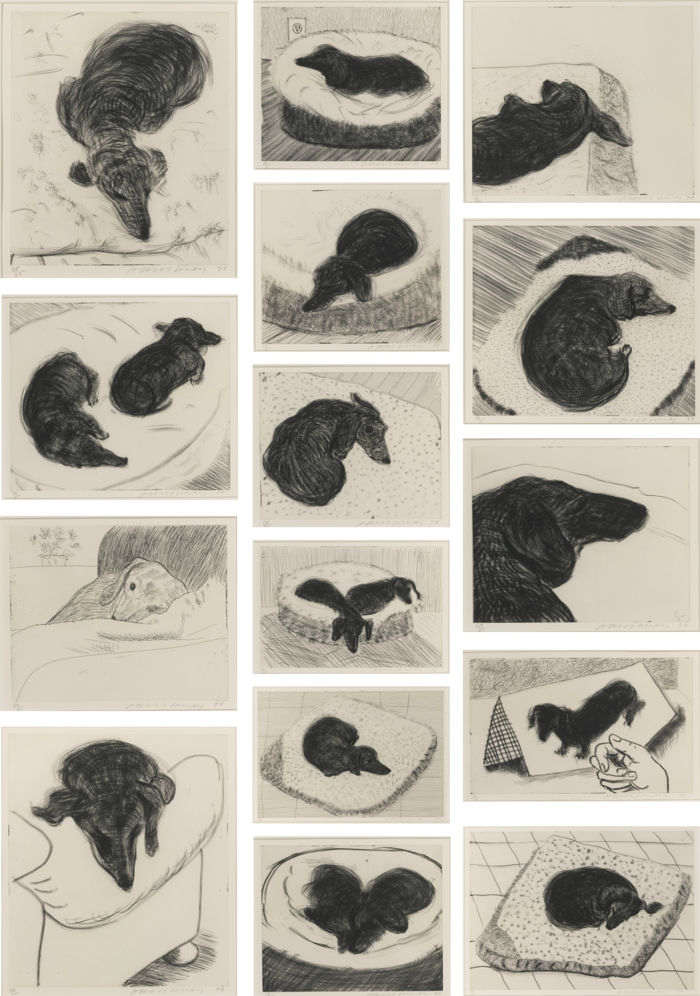 David Hockney-Dog Wall-1998
