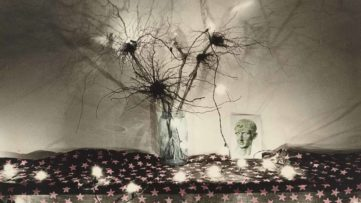 David Lebe - Roots