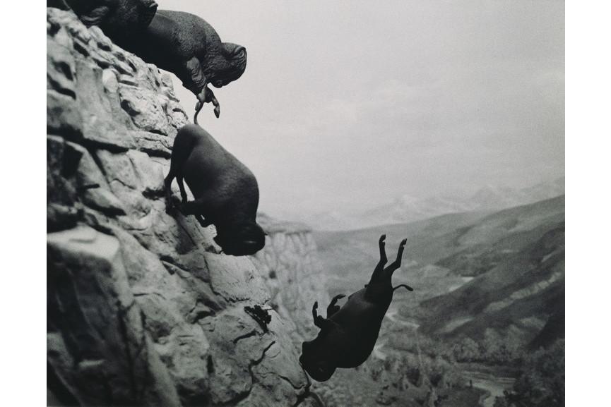 David-Wojnarowicz - Untitled, Falling-Buffalo