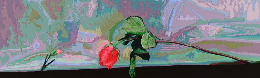 Deborah Claxton - Remembering, 2004.