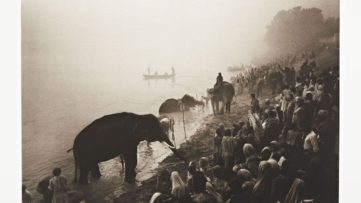 Don McCullin - The Great Elephant Festival at the River Gandak, near Patna, India