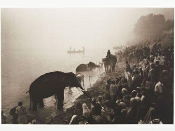 Don McCullin - The Great Elephant Festival at the River Gandak, near Patna, India